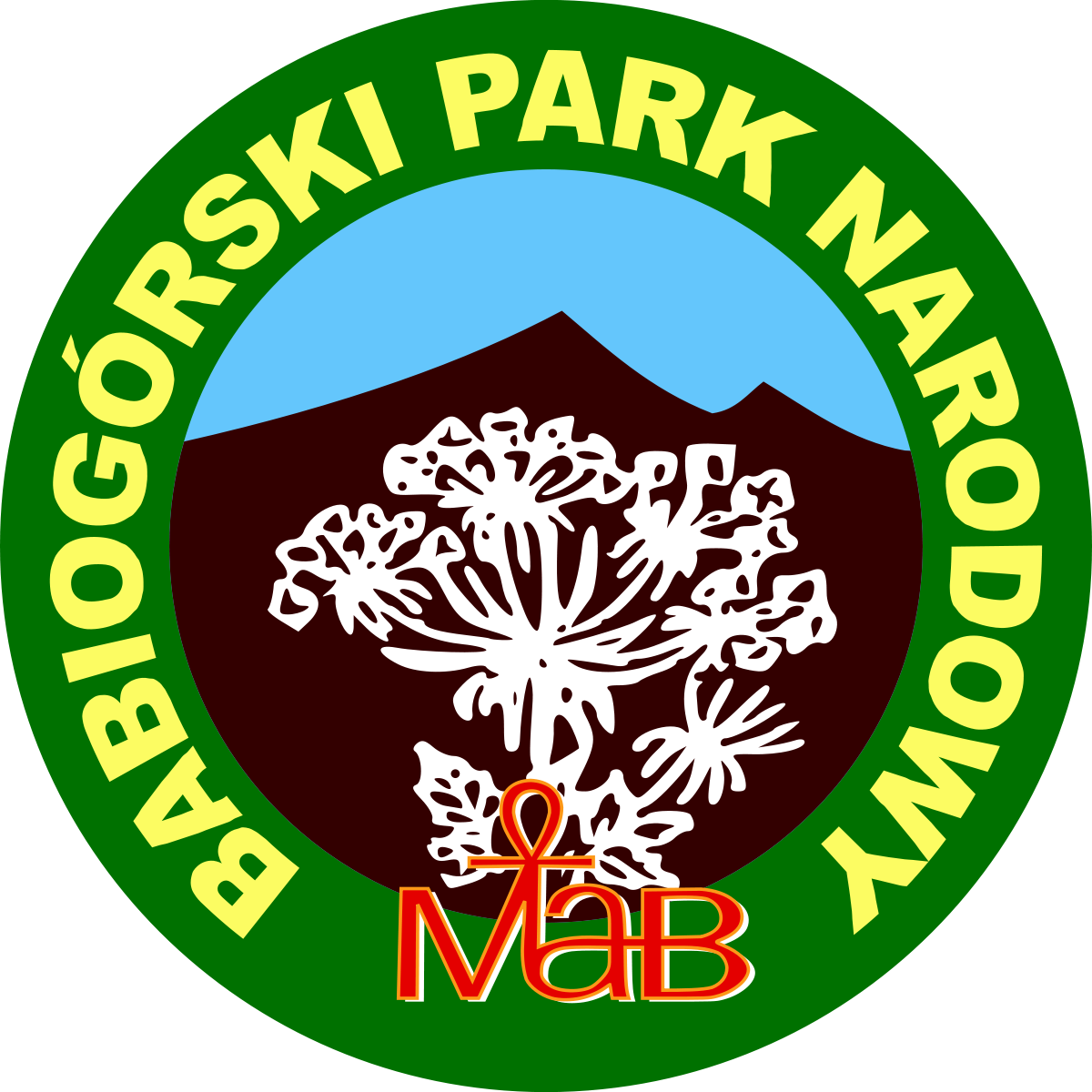 babiogorkiok copy