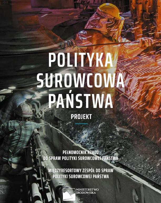 https://www.pgi.gov.pl/images/psp/okladka_psp.jpg