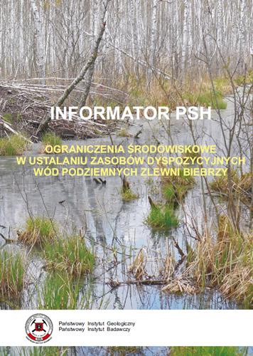 Ograniczenia środowiskowe w ustalaniu zasobów dyspozycyjnych wód podziemnych zlewni Biebrzy