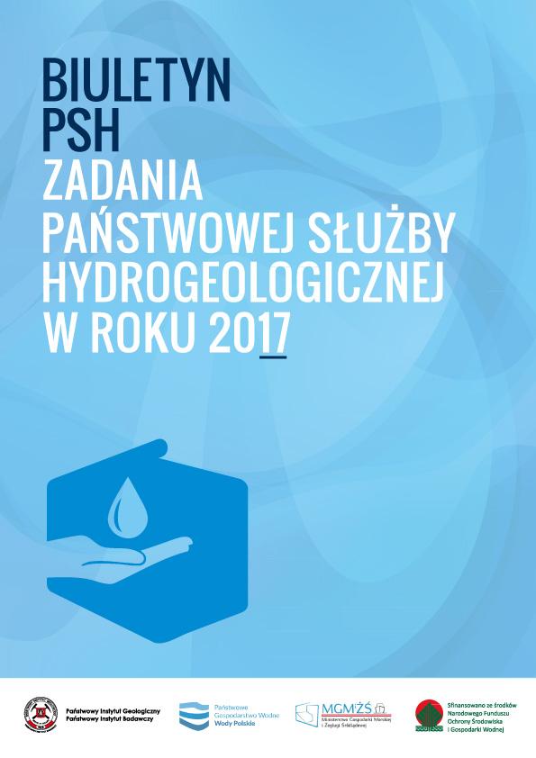 Synteza PSH 2017