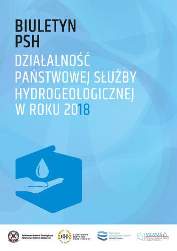 Synteza PSH 2018