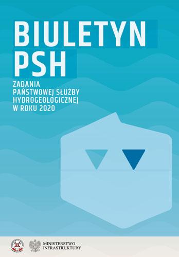 Synteza PSH 2020