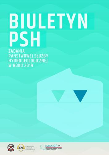 Synteza PSH 2019