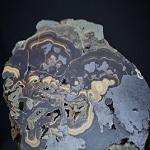 Badania i poszukiwania złóż cynku i ołowiu, Mo-W-Cu, uranu, ziem rzadkich, złota oraz kopalin morskich prowadzone przez PIG